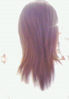 2008年01月31日