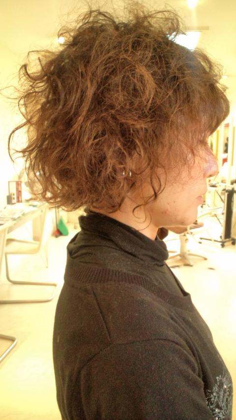 2011年02月26日