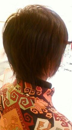 2009年01月30日