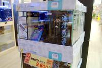 海水魚飼育スターターセットが、8月16日迄お得なプライスで!!