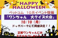 《終了しました》 10月10日(月) ワンちゃん 大クイズ大会