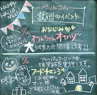 《終了しました》 10月16日(日) ワンちゃんオヤツ大試食大会&ブルーバッファロー推奨販売