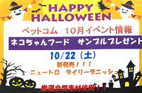 10月22日(土) ネコちゃんフード サンプルプレゼント