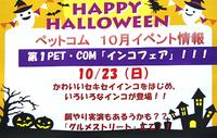 10月23日(日) 第1 PET・ COM「インコフェア」