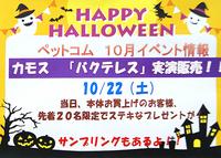 10月22日(土) カモス「バクテレス」実演販売