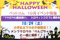 10月29日(土) 「フクロウと魔法使い」ハロウィンコスプレ撮影会
