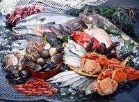 1月27(土)・28日(日) 牡蠣祭り
