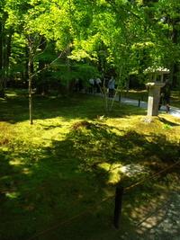 京都大原三千院の初夏