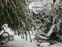 テキサスの雪景色