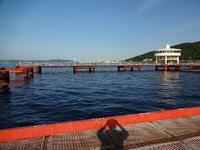 エサ取り釣りin須磨海づり公園