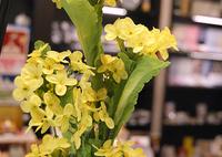 伝統工芸品で楽しむ、様々な花のフォルム
