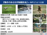 10月15日(土)開催!! 動きのある生き物撮影会in神戸どうぶつ王国