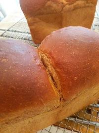 1月のパン教室♪午前