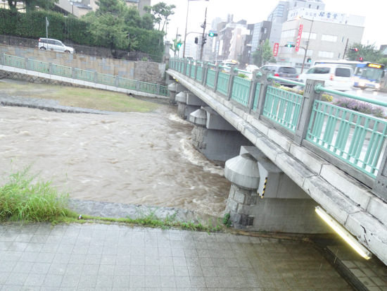 芦屋川(業平橋の下部(北側))20150717