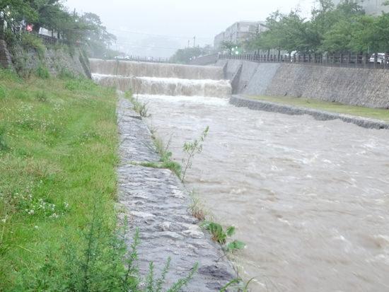 芦屋川(業平橋を背にして北側(六甲山側)を撮影)20150717