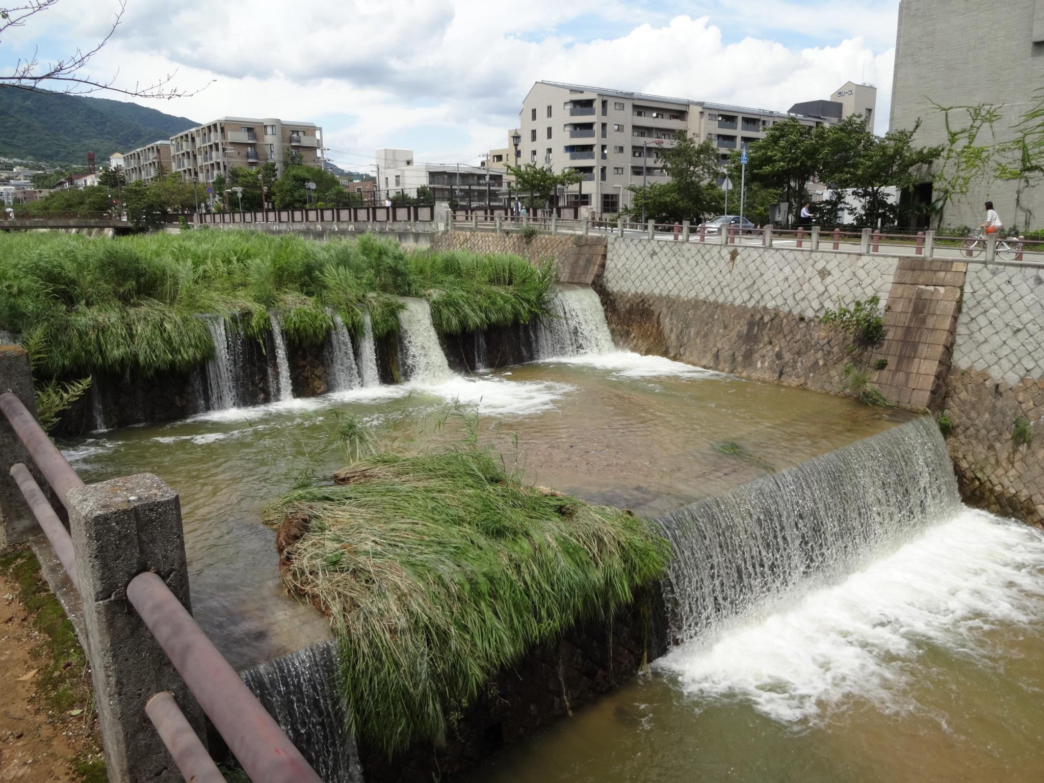芦屋川(業平橋付近|2段滝上部)20140811