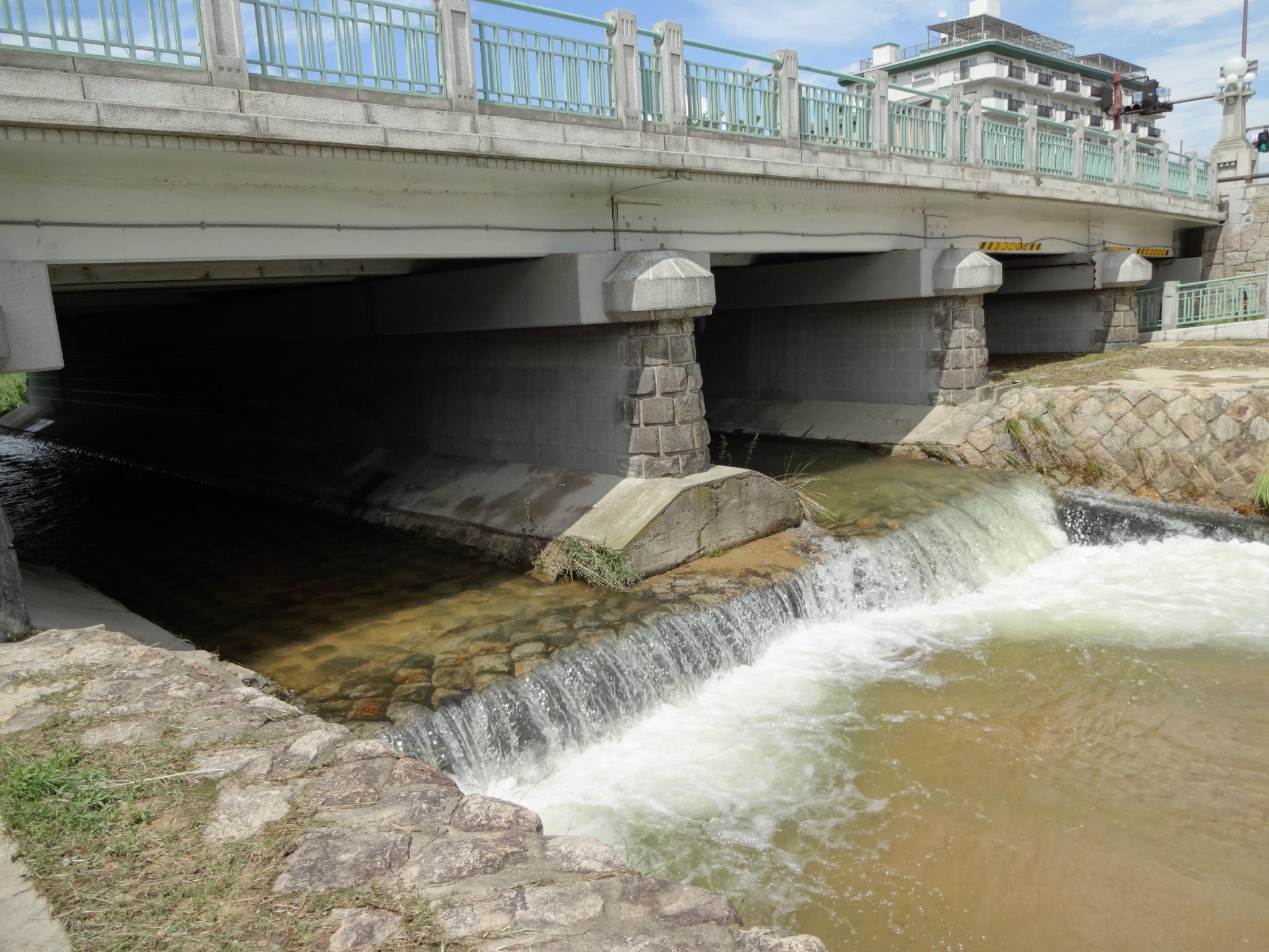 芦屋川(業平橋の下部)20140811