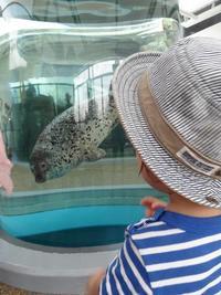 ◆ 京都水族館へ♪ ◆