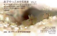 あでやっこvol21.巡回展Adeyacco vol21 exhibition