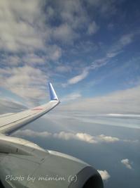 飛行機からの景色 View from  airplane