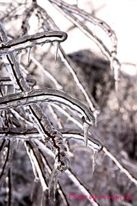 今日は寒い日Cold day today