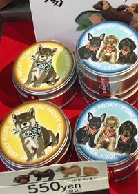 来年の干支かわいい犬のクッキー 神戸元町商店街ジェムビル1Fメゾンドマティエさん