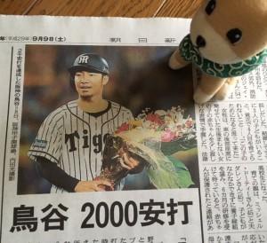 阪神鳥谷選手2000本安打おめでとう!!