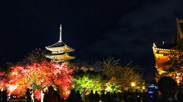 世界遺産の東寺の紅葉ライトアップを見てきました。 東寺は・・・