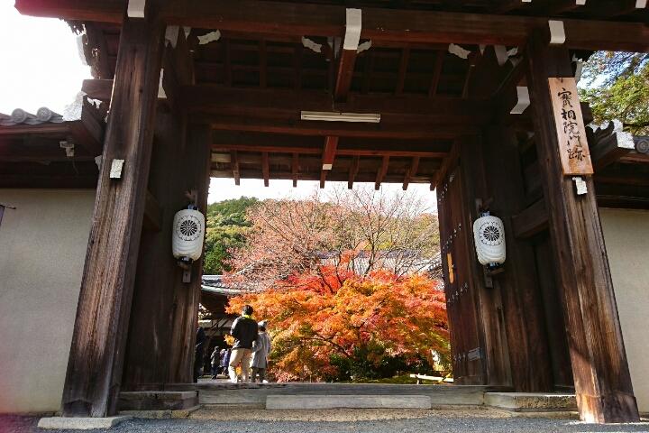 京都岩倉の実相院、「床もみじ」。床に紅葉が映るのが美しい・・・