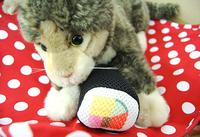 またたび入り恵方巻おもちゃでネコちゃんデンタルケア