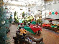 12月2日(火)〜25日(木)ホワイトガーデンで楽しむクリスマス展
