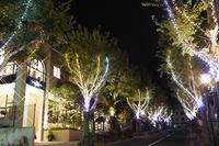 開催中~2018年1月31日(水) 北野クリスマスストリート2017