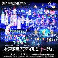 12月2日(土)~2018年2月12日(月・祝) 神戸須磨アクアイルミナージュ