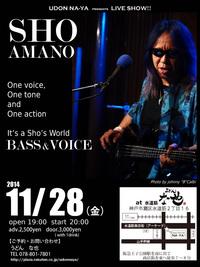 SHO AMANO 2014.11.28