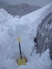 Teams農場は雪の中