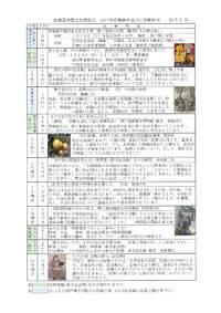 中国文化同好会 2017年活動報告並びに活動計画