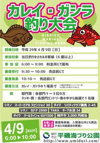平磯 4/9「カレイ・ガシラ釣り大会」開催♪