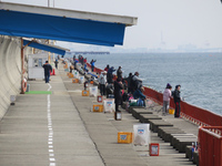 2/11 平磯「根魚カーニバル」開催!