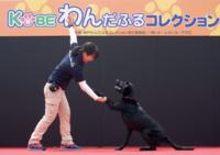ワンちゃんと一緒にLet's Dance!!