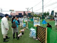 フットサルコートでは、アミーゴ主催「わんわんフェスティバル」を開催いたしました!