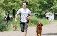 芝生公園にて、ワンちゃんと楽しめるイベントを開催!