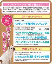 アグロガーデン神戸駒ヶ林店・同日10/6(日)限定イベント♪