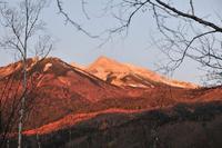 乗鞍高原の晩秋